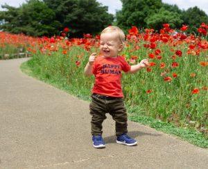 A baby in a flower maze